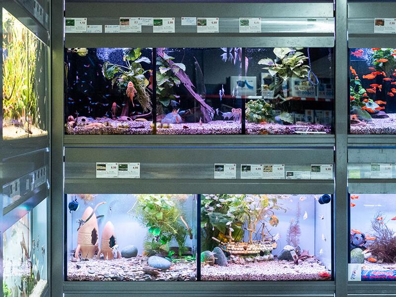 riesa park zoo und co galerie 3